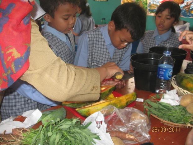 Siswa mengidentifikasi asal tanaman dari biji, batang, tunas dll - pembelajaran  IPA kelas